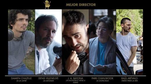 14 Director